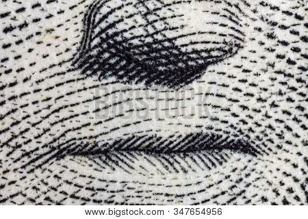 Macro close up photograph of George Washington lips and nose on the US one dollar bill.