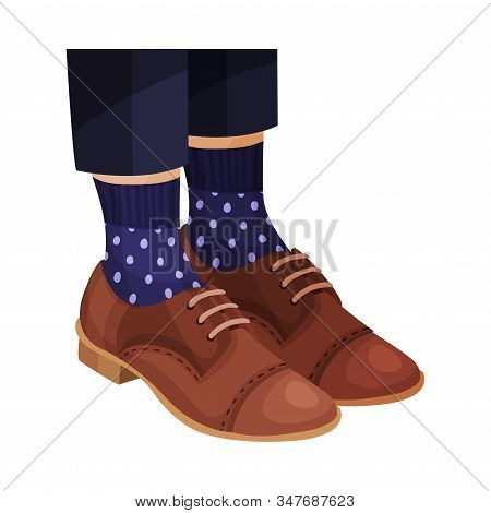 Pair Of Female Shoes With Shoelaces Worn By Someone Legs Vector Closeup Illustration
