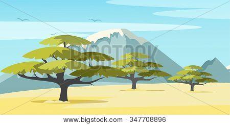 African Savannah Flat Vector Illustration. Picturesque Wilderness Panorama, Beautiful Landscape, Aca