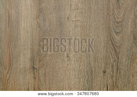 Solid Wood Plywood And Veneer Slide Sheet, Oak, Beech, Cherry, Walnut, Maple, Ash, Wenge, Pine, Teak