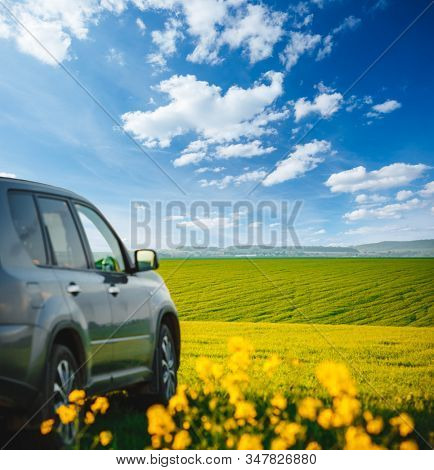 Car parked in a green field on a country road. Beautiful spring day at countryside. Location place of Ukraine, Europe. Scenic image of agrarian industry. Photo of ecology concept. Beauty of earth.