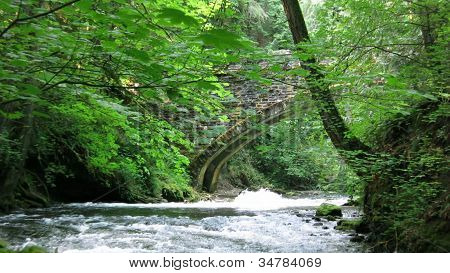 Bridge at Whatcom Falls Park