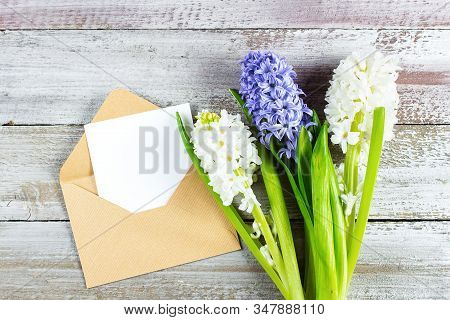 Mothers Day Holiday Concept. Hyacinth, Flowers And Empty Card On Shabby Wooden Background. Greeting