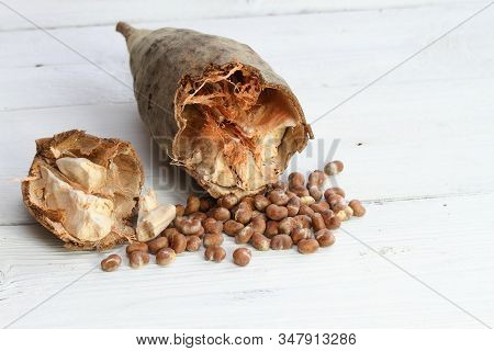 Baobab Fruit, Pulp And Seeds.   Baobab, ,  Adamsonia Digitata, From Africa On The White Wooden Table