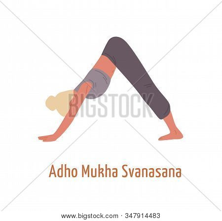 Yogi Female In Adho Mukha Svanasana Posture Vector Flat Illustration. Woman Demonstrating Downward D