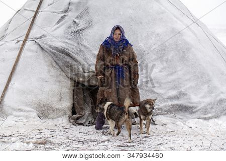 Far North, Tundra, A Girl-helper Of The Reindeer Herder, A Girl In National Clothes Stands Near A Yu