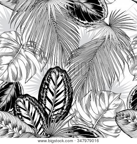 Seamless Pattern With Black And White Tropical Foliage. Large Ornamental Leaves. Hand Drawn Vector I
