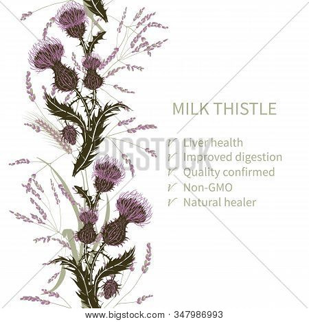 Silhouette Of Milk Thistle Flower On Background Meadow Plants And Cereals. Floral Composition With W