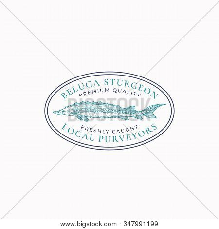 Fish Vintage Frame Badge Or Logo Template. Hand Drawn Sturgeon Ro Beluga Sketch Emblem With Retro Ty