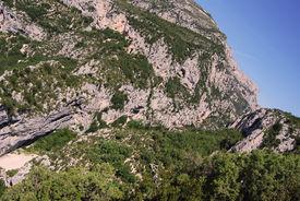 Rocky Mountainside