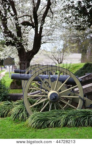 Two canons in front of Stanton hall in spring time