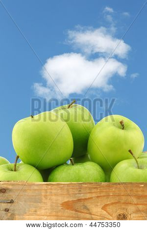"""freshly harvested """"Granny Smith"""" apples in a wooden crate against a blue sky with clouds"""