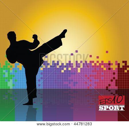 Karate illustration. Vector