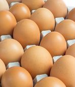 Eggs raw background in carton,food egg for healthy poster
