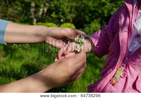 Mothers Hand Adorned Baby Hands With White Daisy