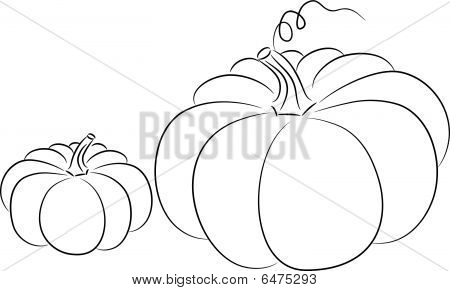 Pumpkin sketch