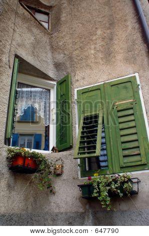Revo Windows