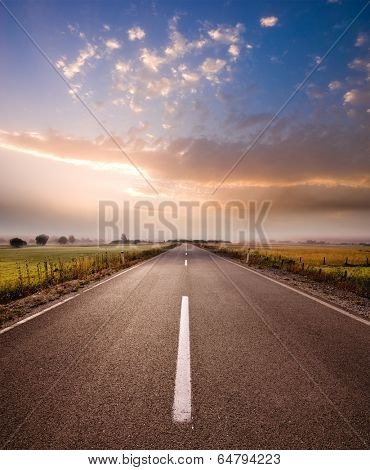 misty morning on rural road in Serbia poster