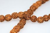Photo of Buddhist or Hinduist Japa mala (prayer beads) made of rudraksha isolated on white background. poster