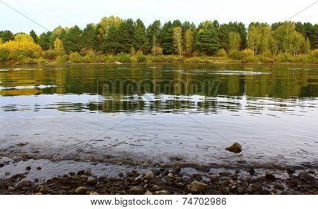 Riverbanks Kan in autumn, Krasnoyarsk region, near the city of Zelenogorsk