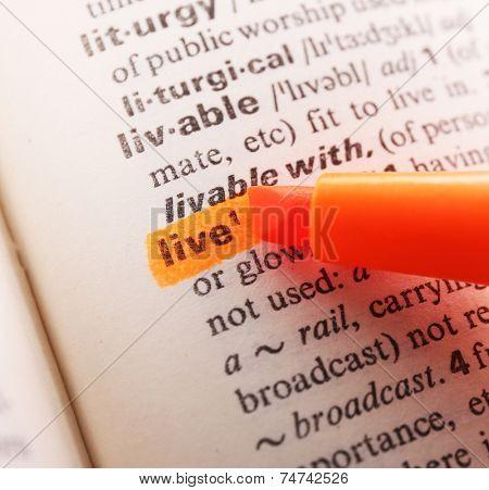 Orange marker highlighting word in dictionary
