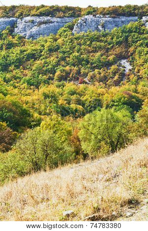 view of gorge mariam-dere in Crimean mountains in autumn poster