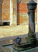 Two doves and water-pump poster