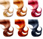 Different hair colors palette. Hair Colors Set isolated on white background. Tints  poster