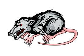 Danger rat