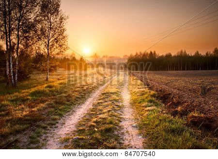 Sandy Rural Road In Landscape