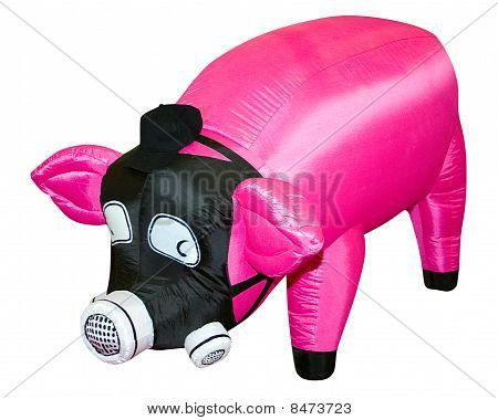 Pink Pig In A Gas Mask.
