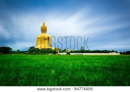 Buddha Big Statue
