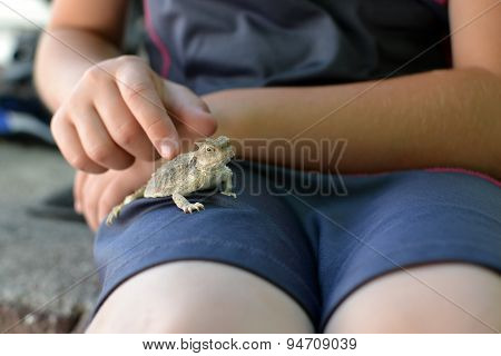 Young Girl Petting Horny Toad