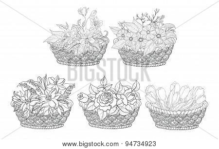 Baskets with flowers set, outline
