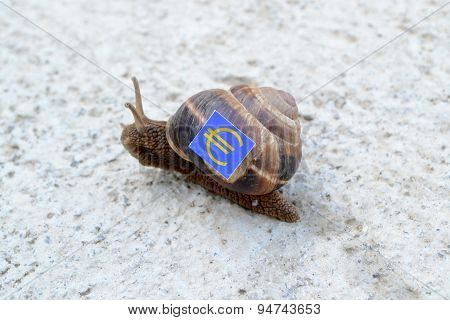 Snail With With Symbols Of Money On A Shell