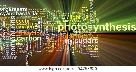 Background concept wordcloud illustration of photosynthesis glowing light