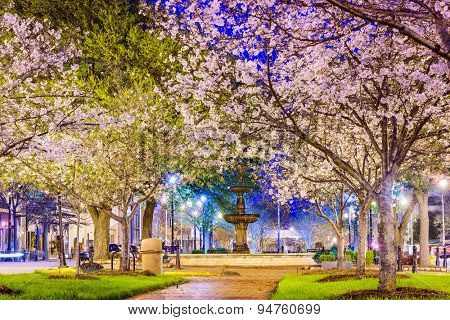 Macon, Georgia, USA downtown with spring cherry blossoms.
