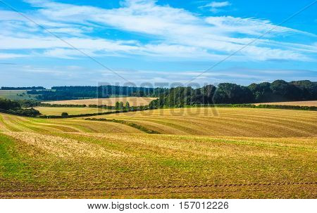 Hdr English Country Panorama In Salisbury