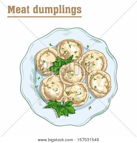 meat dumplings. ravioli. main courses. colored illustration on a white background