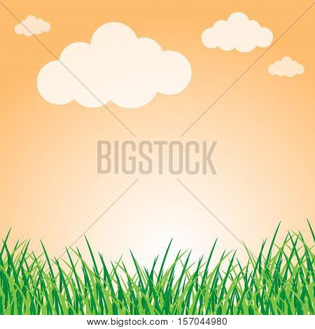 Summer landscape with green grass can use for background