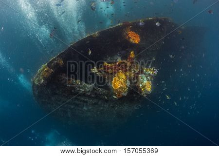 Underwater shoot of a shipwreck with corals and fishes. Tulamben, Bali.