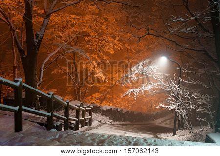 snowfall at park of Namsan tower of Seoul Korea