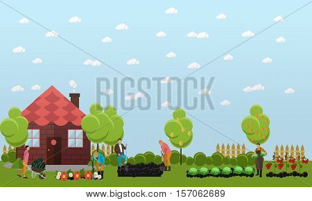 People working in garden near cottage, gathering harvest of fruit and vegetables, digging soil and caring for flowers. Gardening concept vector illustration in flat style.