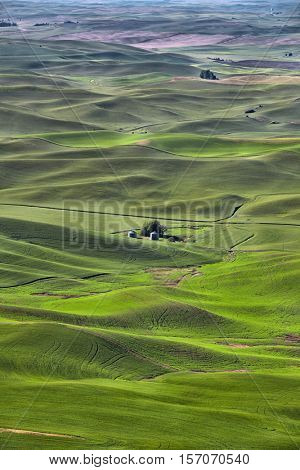 Aerial view of Palouse landscape in Washington state