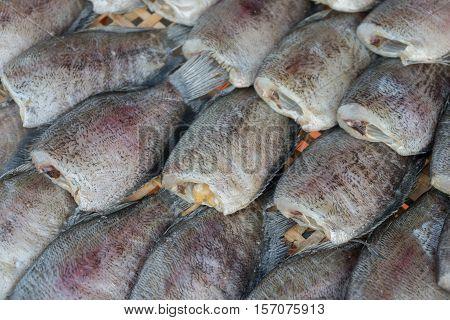 close up drying snakeskin gourami fishs in threshing basket