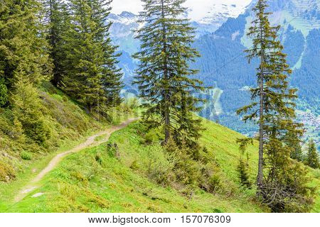Crossing the Alps. Hiking trail in the Alps. Switzerland. Murren.
