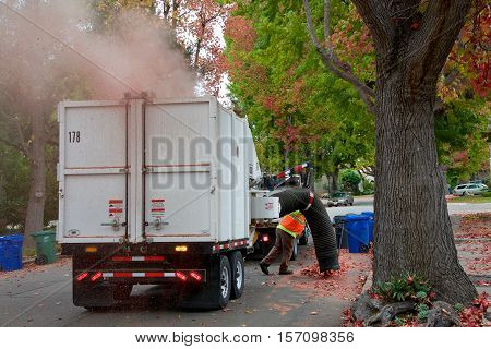 Alameda CA - November 15 2016: The City of Alameda's urban forest is given a high priority which includes clean up of leaves falling each year. Huge truck vacuums clean up fallen leaf debri.