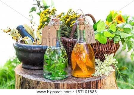 Healthy Tincture With Herbs And Alcohol On Old Wooden Table