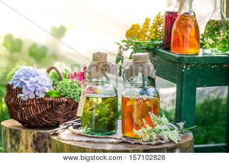 Healing Herbs In Bottles With Herbs And Alcohol