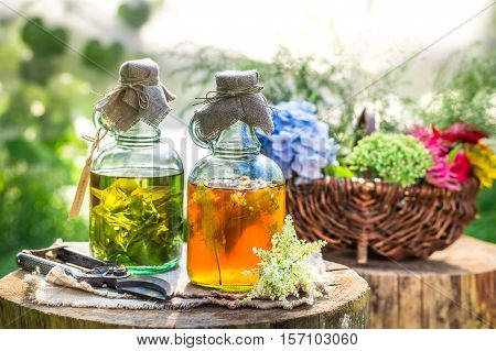 Healing Tincture In Bottles With Alcohol And Herbs